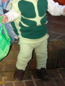 Turtle Costume Front