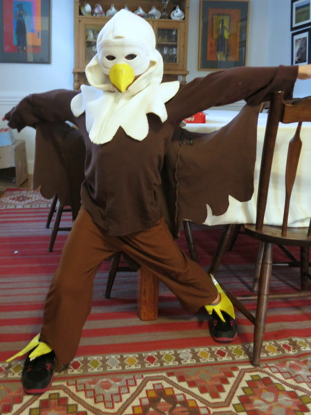 Bald Eagle Costume